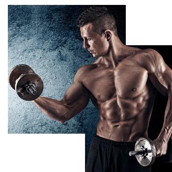 Fitness- und Kraftsport